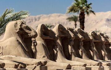 египет7